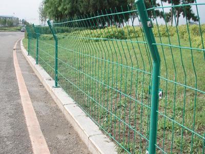 山东青岛公路护栏网实拍图